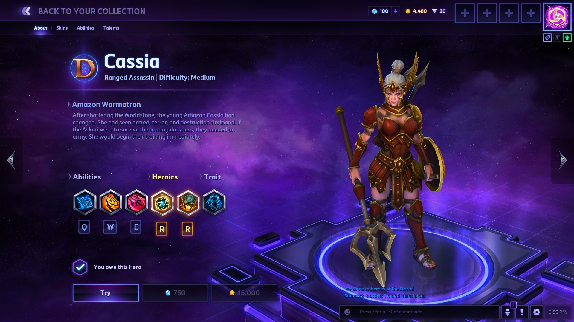 heroes of the storm guide 2017