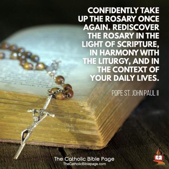 catholic daily bible reading guide